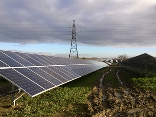 Solar farm powers 800 homes a year